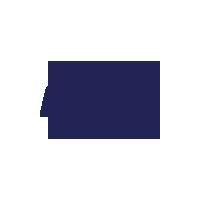fly wheel logo